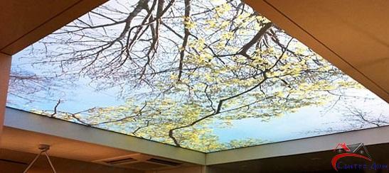 фотопечать-натяжной-потолок-Днепр